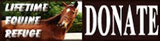 WFLF Equine Rescue Program