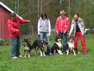 Sheena, Riki, Kiki ja Tatu