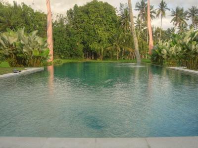 Zwembad van Villa Sabandari, een boutique hotel in Ubud op Bali