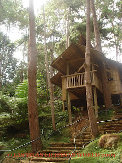 .com/this/this-storey-modern-design-nipa-hut-philippines.htm