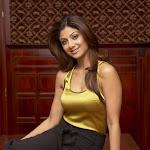 Shilpa Shetty  Spicy Photo Gallery
