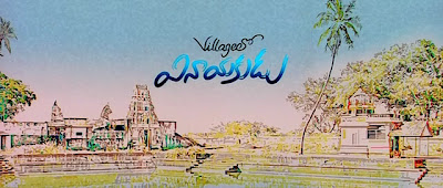 village lo vinayakudu(2009) screenshots
