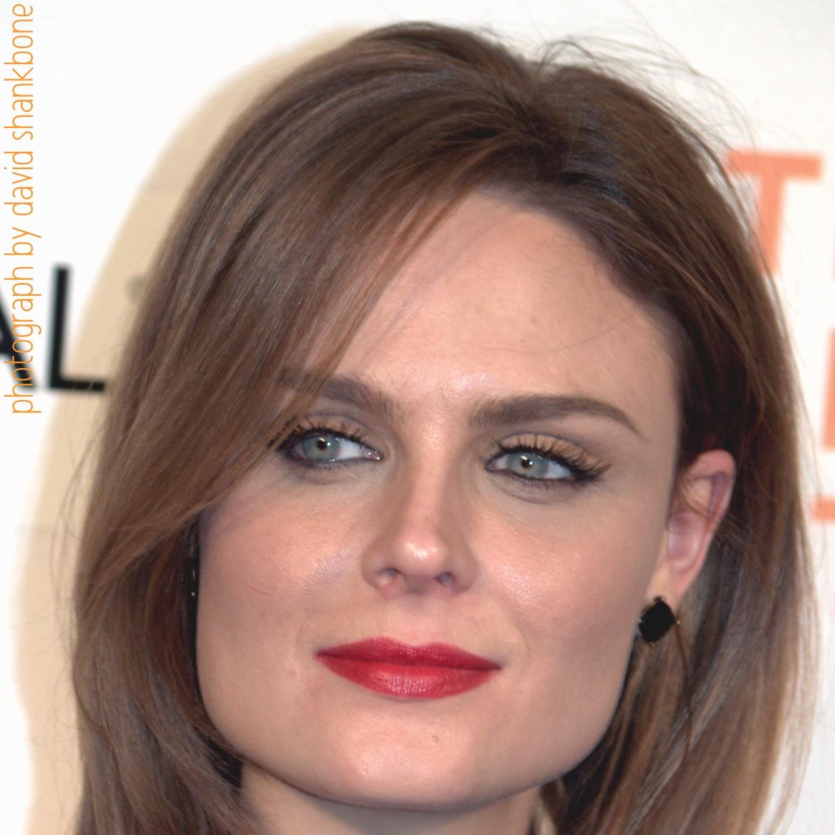 http://1.bp.blogspot.com/__UQSIjH59iA/TIByflXEFJI/AAAAAAAAFr4/GlDf3r9t6SY/s1600/Emily-Deschanel-Face-1200x1200-Pixels.jpg