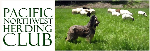Pacific Northwest Herding Club