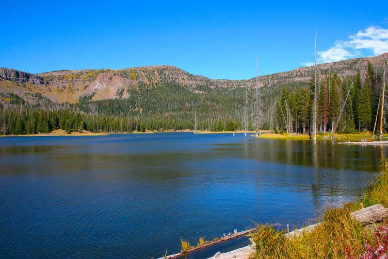 Colorado lifestyle skinny fish lake hike for Fishing lakes in colorado springs