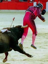 Esquerra-Illes pide la modificación de la Ley de Protección de Animales para prohibir las corridas