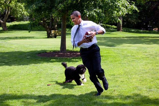 Obama and Dog Bo Playing Football