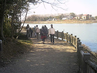 葦の茂る立石池