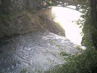 本流木曽川へ流れ込む