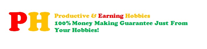 Productive & Earning Hobbies