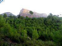 Vall del Tenes 2009