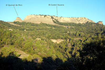 Castell Sapera