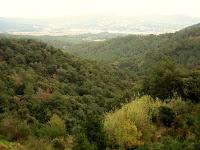 Montnegre 2009