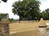 Roure del Giol des de l'ermita de Santa Coloma Sasserra