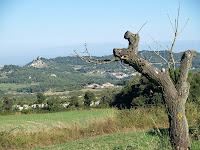 En primer terme la Riera i al fons el Castell de Granera