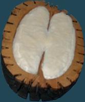 Fruita-6. Fusta, escuma i tela