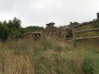Montfred