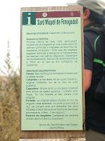 Informació de Sant Miquel de Fonogedell