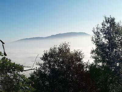 El Montseny amb el Pla de la Calma, a sota el Pla de la Garga cobert per la boira