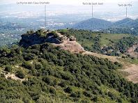 La Punta dels Caus Cremats vista des del Puig Codina