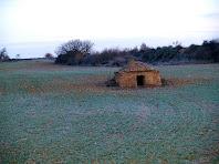 Barraca de vinya des del Camí paisatgístic de Sant Benet