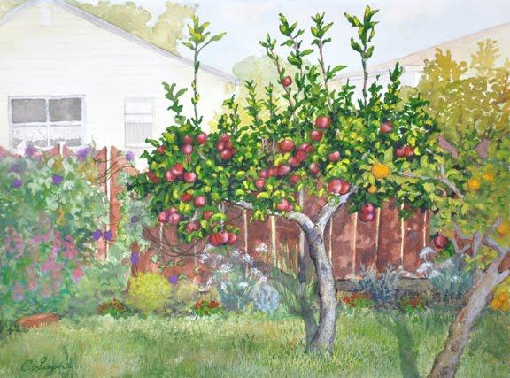 my backyard apple