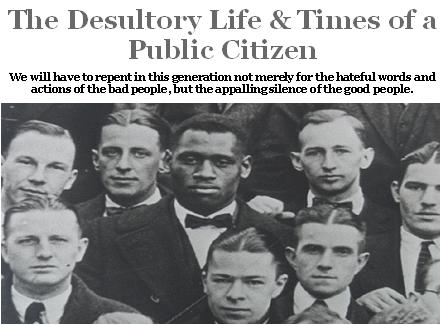 The Desultory Life & Times of a Public Citizen
