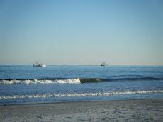Palmetto Dunes Cam Hilton Head