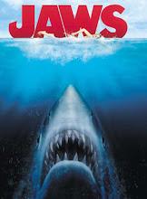 DR. JAWS PIZARRUUS