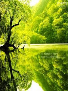 Free download Samsung Corby Nature Wallpapers - Green River