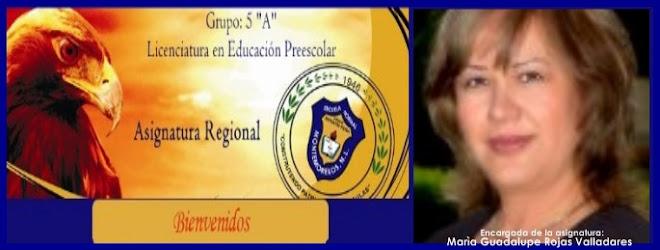 ENCARGADA DE LA ASIGNATURA
