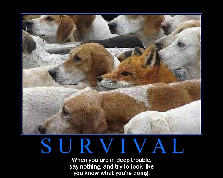 funny motivational pics. funny motivational