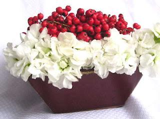 red white christmas flower wallpaper