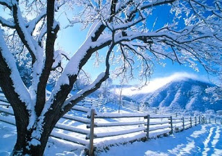 Christmas winter snowfall picture