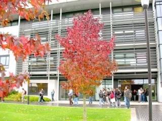 Warwick Mathematical Institute