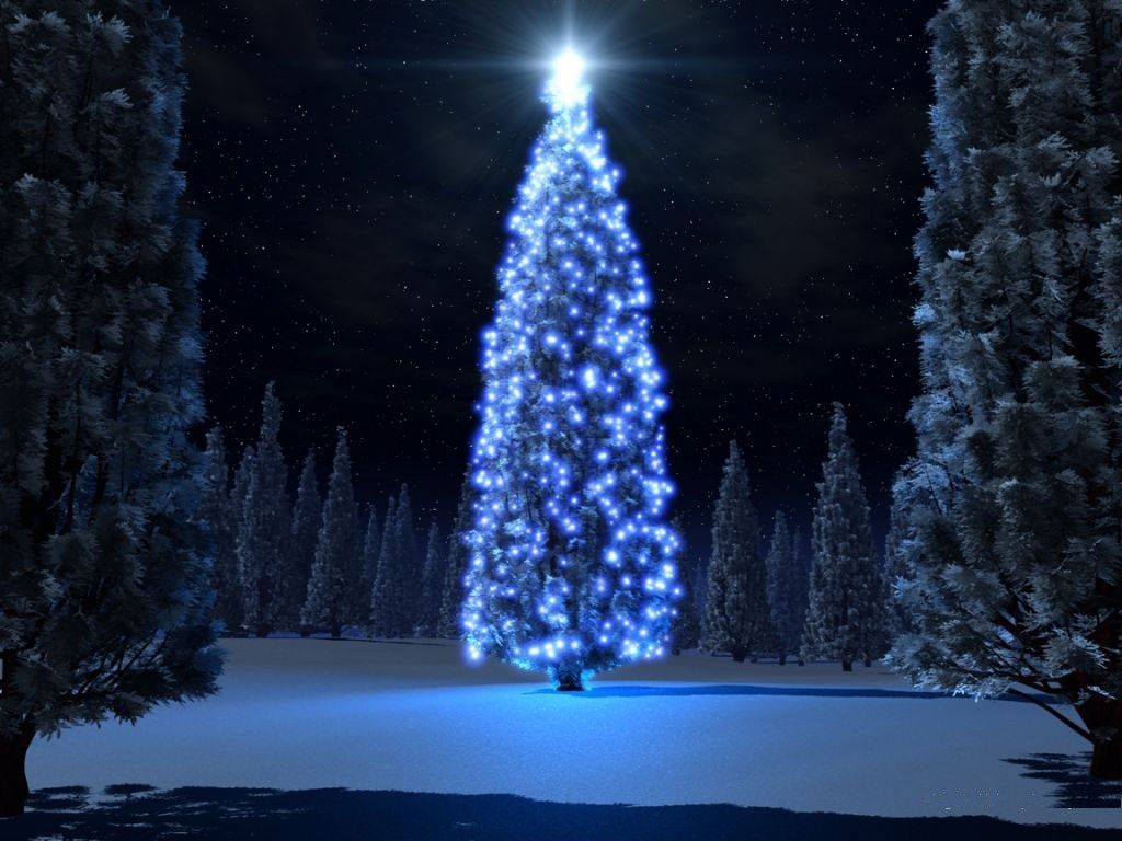 Božićna drvca - Page 2 Bo%25C5%25BEi%25C4%2587no-drvce-download-besplatne-slike-pozadine-desktop-blagdani-praznici-bozic-cestitka