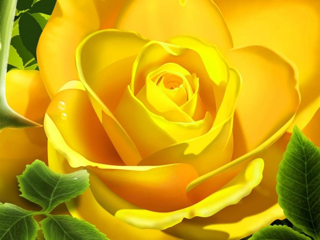 ... za desktop 3D slike, - download besplatna pozadina za desktop biljke