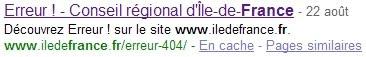 Erreur 404 dans Google