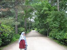Menikmati kehijauan alam di Hamburg
