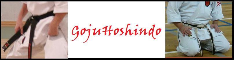 hoshin-do