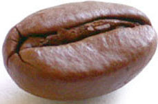 coffee_bean.jpg