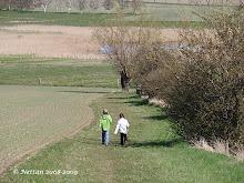 Promenad på landet