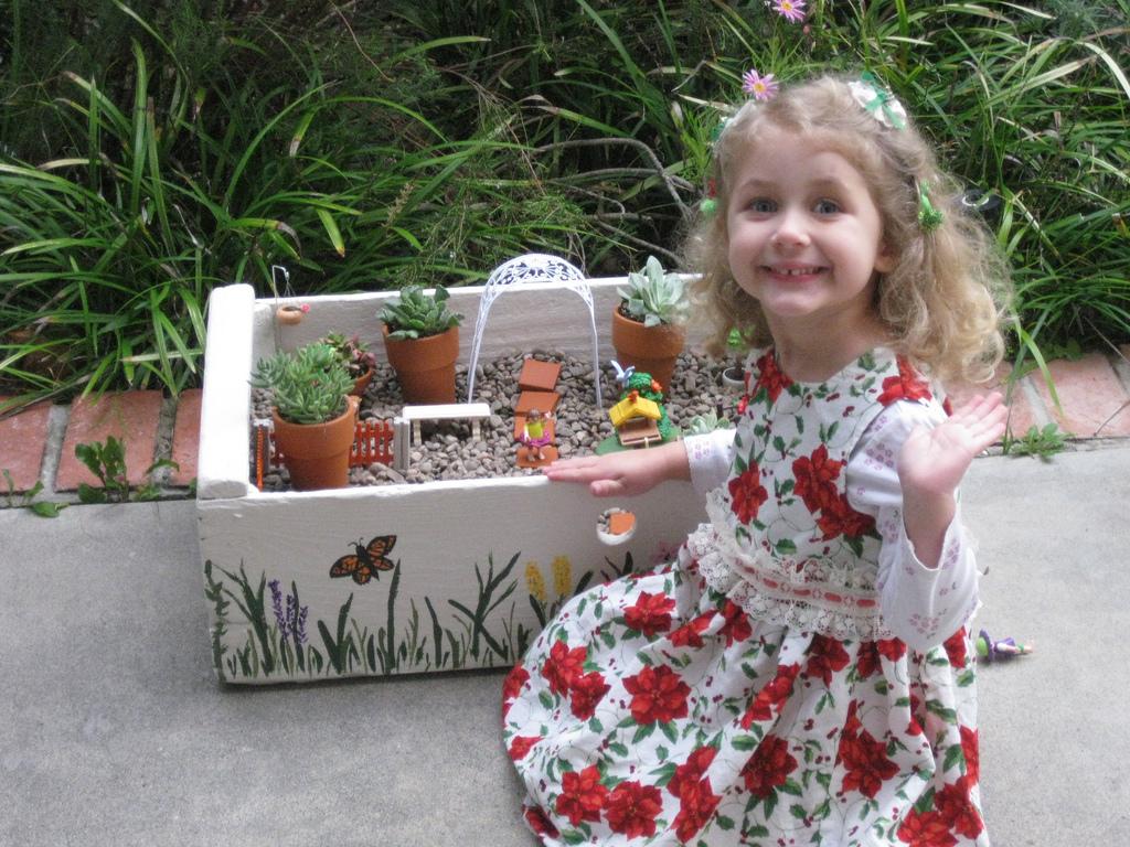 Growing A Garden In Davis Fairy Garden in a Box
