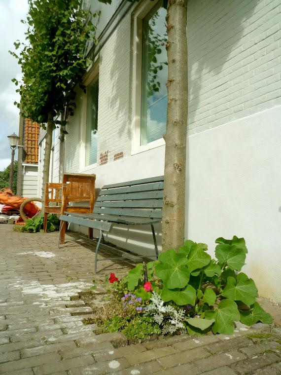 Authentieke dijktuin, voorzijde huis - zomer