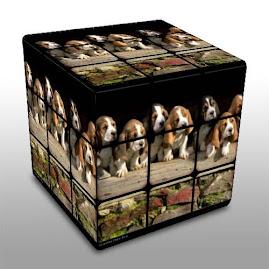 Puppies Rubik's Cube