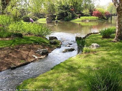 Озеро в весеннем парке.
