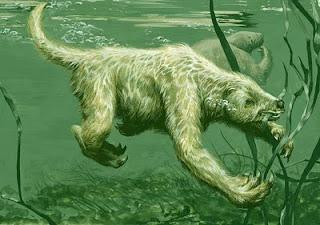 marine sloth