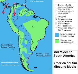 South America during the Mid Miocene