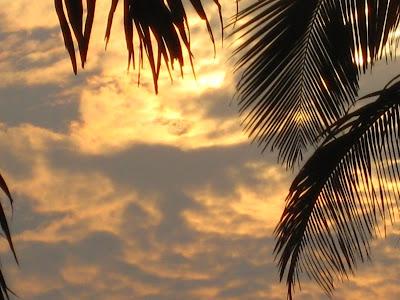Masterpiece Way Palm Beach Gardens Fl