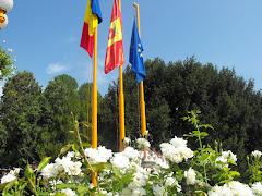 Romania-Sannicolau Mare-Uniunea Europeana